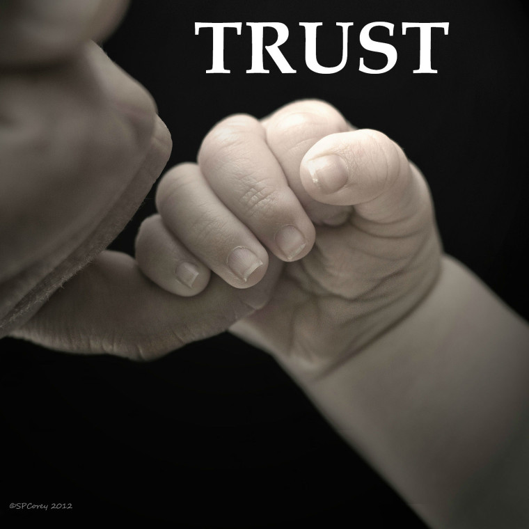 relationship between trust and leadership pdf